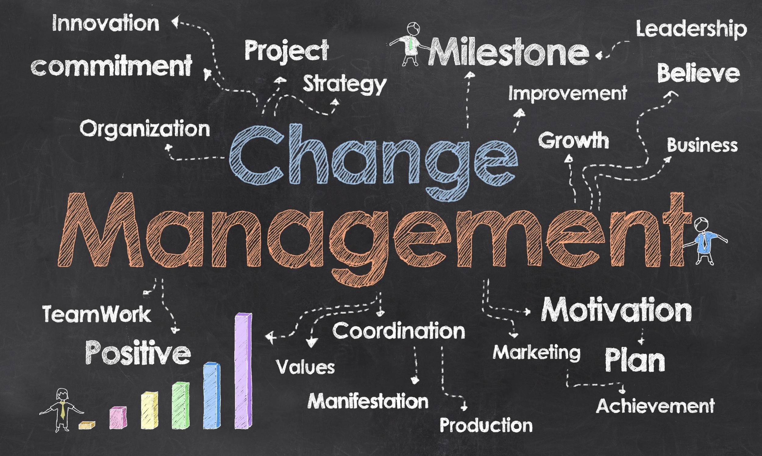 Change Management Pict